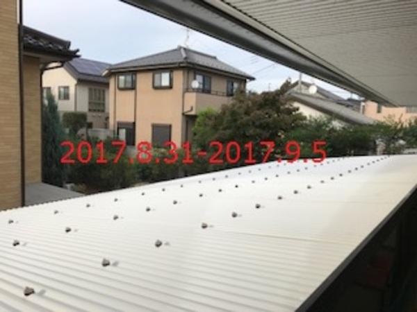 茨城県守谷市 S様邸 波板カーポートの波板交換工事!のサムネイル