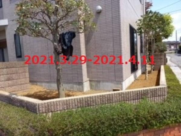 千葉県八千代市 T様邸 植栽からフェンスへ!のサムネイル